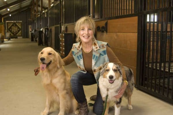 photo of dog boarding services center interior with trainer and dogs