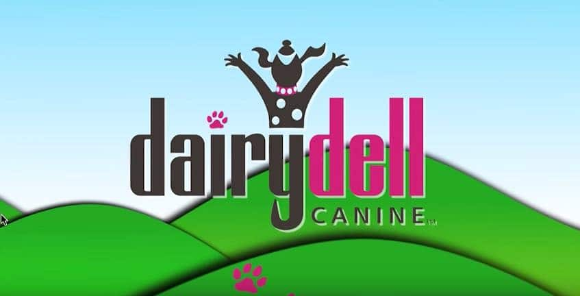 Dairydell Canine Training and Boarding | Home Page 12