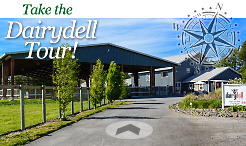 dog boarding and training title image for Dairydell Canine 3D Tour