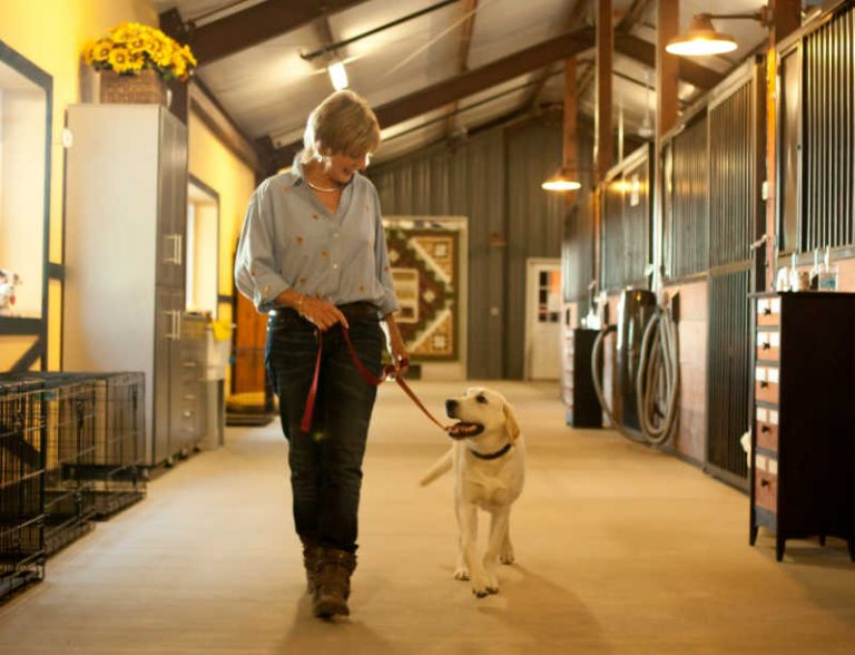 Dog Boarding and Training Expert, Camilla Gray-Nelson