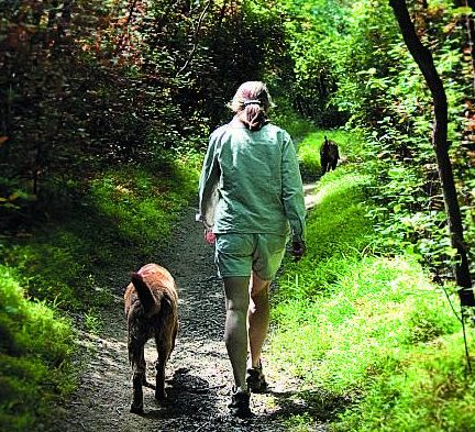 photo of woman walking dog in forest