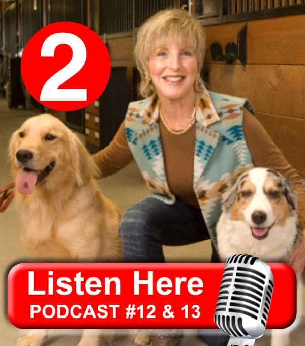 Dairydell Dog Training Blog 1