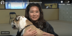 Dog Training for Mill Valley and Tiburon Dogs 4