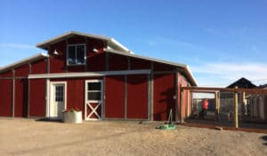 dairydell doggie daycare barn