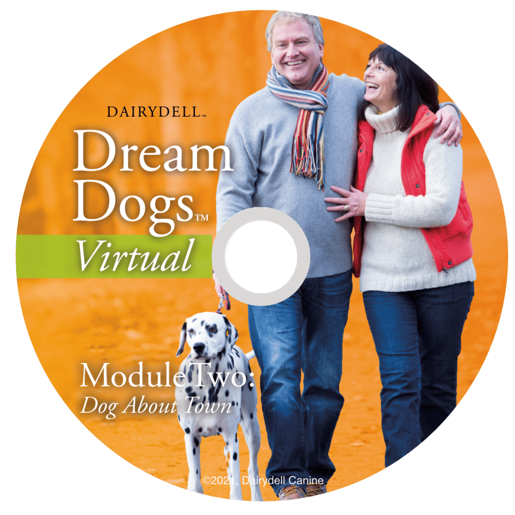 Dream Dogs Virtual Overview 5