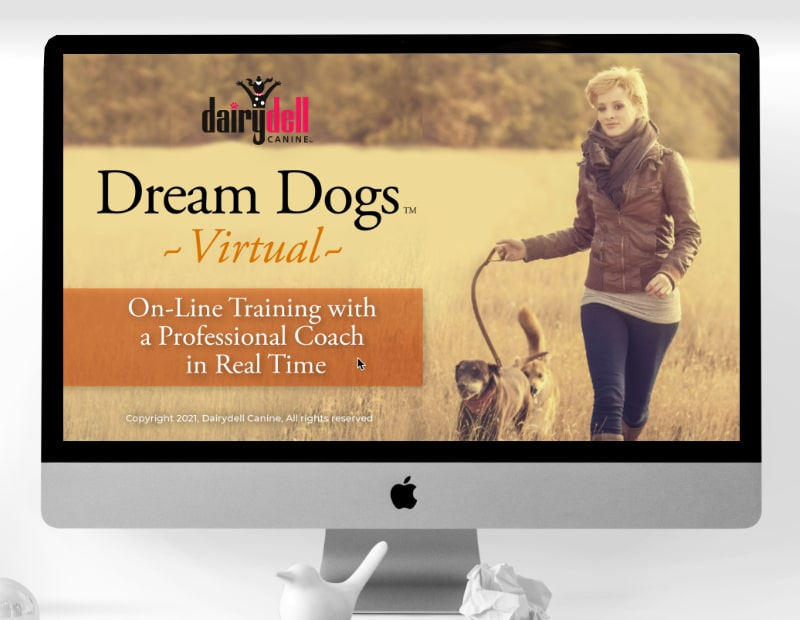 Dream Dogs Virtual Overview 3